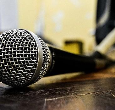 Mikrofon süngeri baskılı modeller