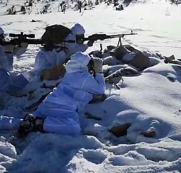 Bitlis ve Siirt'te 'Eren-6 Mergelo Operasyonu' başlatıldı
