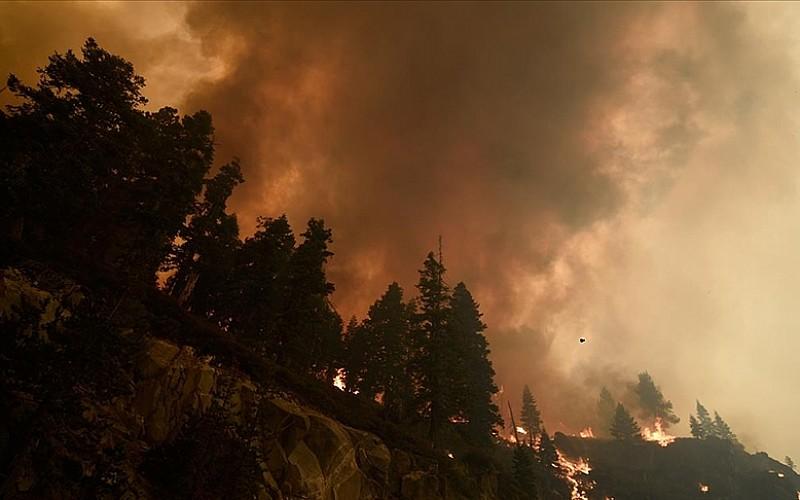 California'daki 'Caldor' yangını 756 kilometrekare alanı tahrip etti