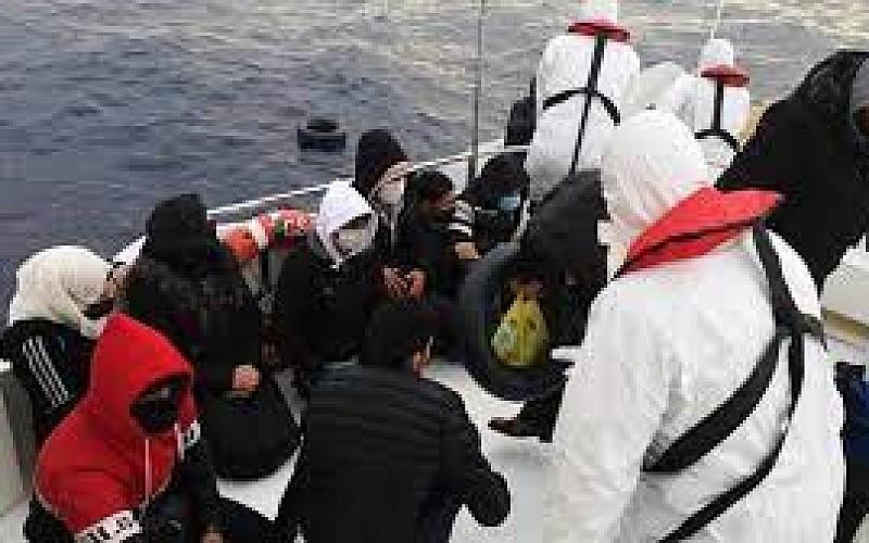 Türk kara sularına geri itilen sığınmacılar kurtarıldı