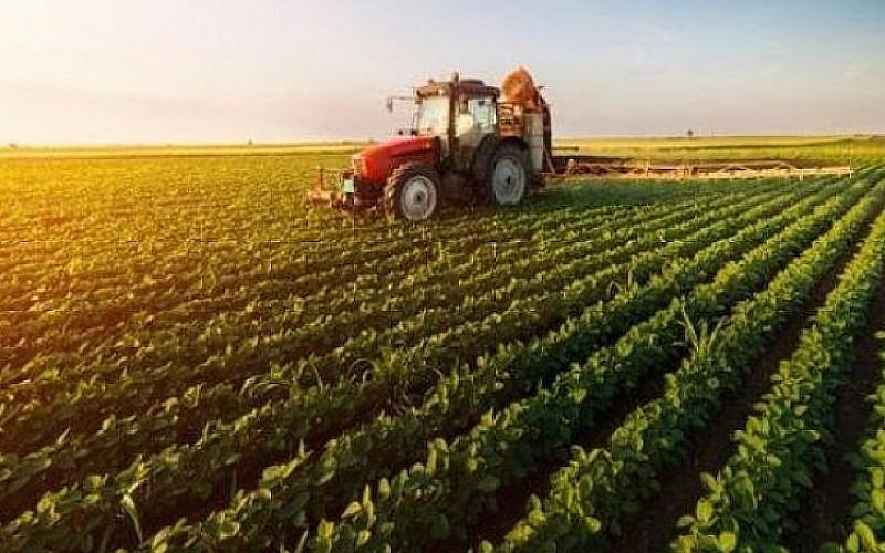 Tarım ÜFE verileri açıklandı