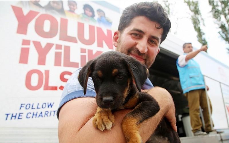 Sel enkazından çıkartılan 'Bozkurt'u yardım aracı şoförü sahiplendi