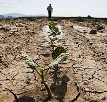 İklim değişikliğinin gıda güvenliğine etkileri