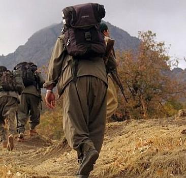 Van'da terör örgütü PKK'ya eleman temin eden zanlı gözaltına alındı