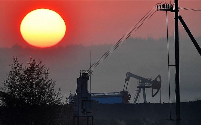Uluslararası Enerji Ajansı'nın 'fosil yakıt yatırımlarını durdurma' çağrısına Rusya'dan eleştiri