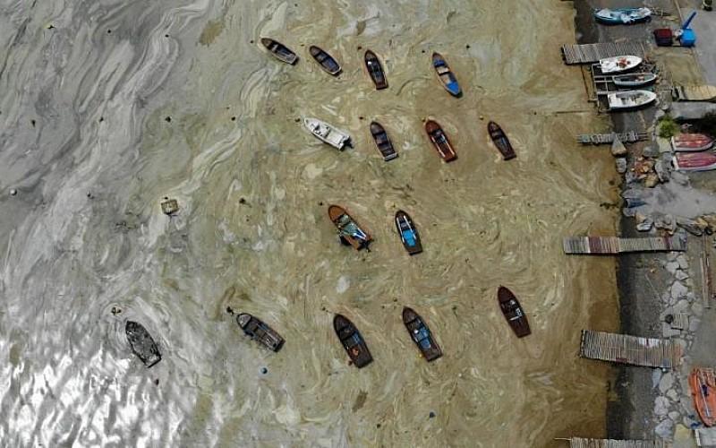 İzmit Körfezi'nde görülen deniz salyası etkisini sürdürüyor