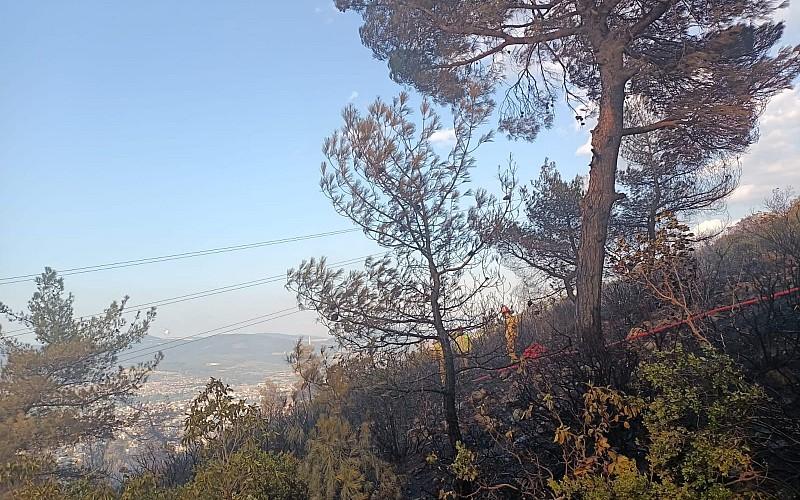Manisa'da 3 hektarlık alanda etkili olan orman yangını kontrol altına alındı