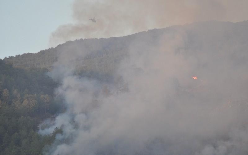 Muğla'nın Köyceğiz ilçesinde çıkan orman yangını kontrol altına alınmaya çalışılıyor