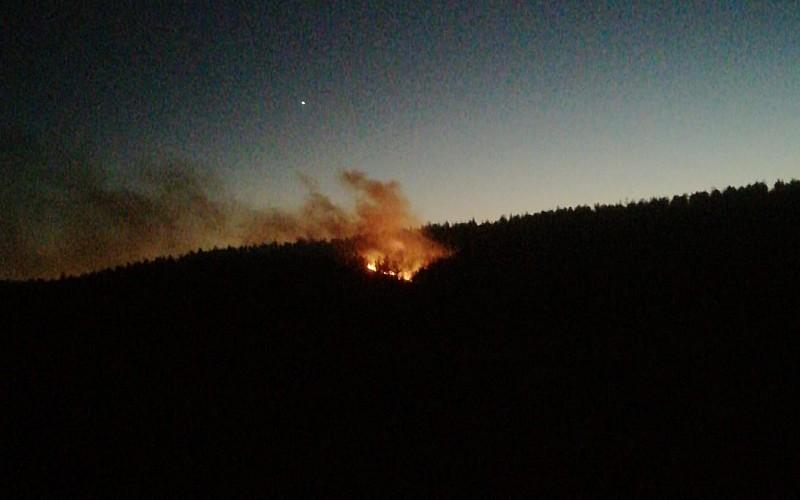 Adana'nın Kozan ilçesinde çıkan orman yangını söndürüldü