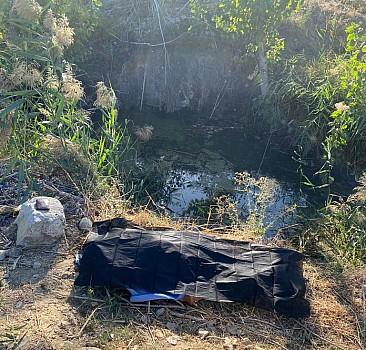 Aydın'da 87 yaşındaki çoban gölette ölü bulundu