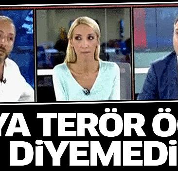 Taraf yazarı PKK'ya terör örgütü diyemedi