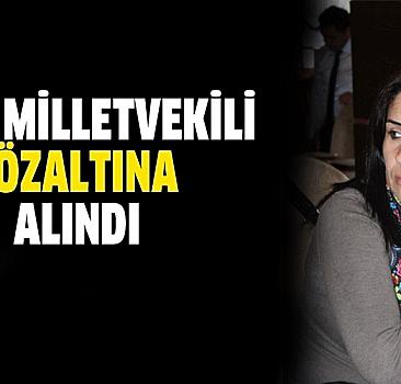 HDP'li milletvekili PKK'ya silah götürürken yakalandı