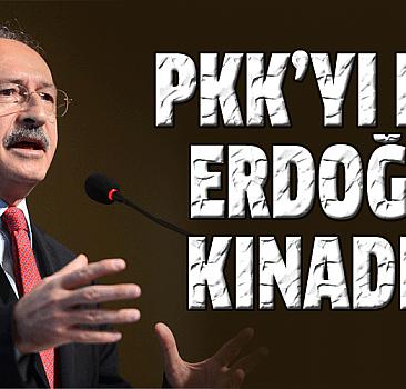 PKK'yı değil, Erdoğan'ı kınadılar