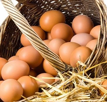 Yumurta samanla satılınca 'köy yumurtası' oluyor!