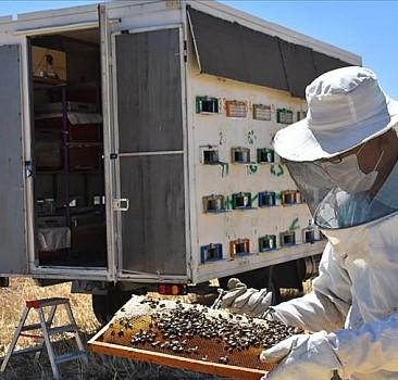 Kaporta ustası tasarladığı konteynerle arılarını 'gezdiriyor'