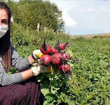 Liseli Nazlıcan okulda, bahçede ve pazardaki çalışmalarıyla ailesinin gururu oluyor